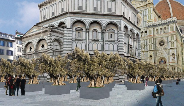 florence-duomo-olive-grove