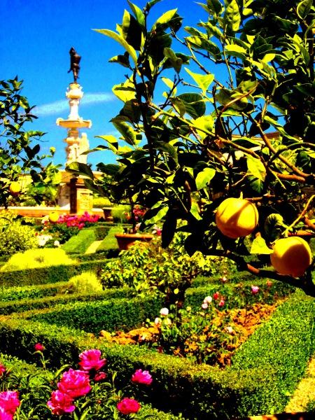 Garden at Villa di Castello, photo by Hannah