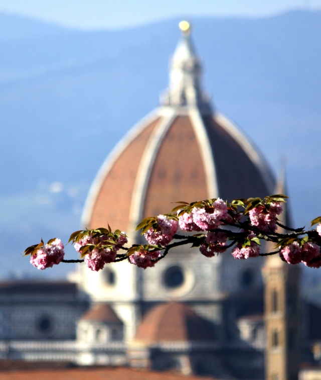 Spring in Florence by Giuseppe on Flickr